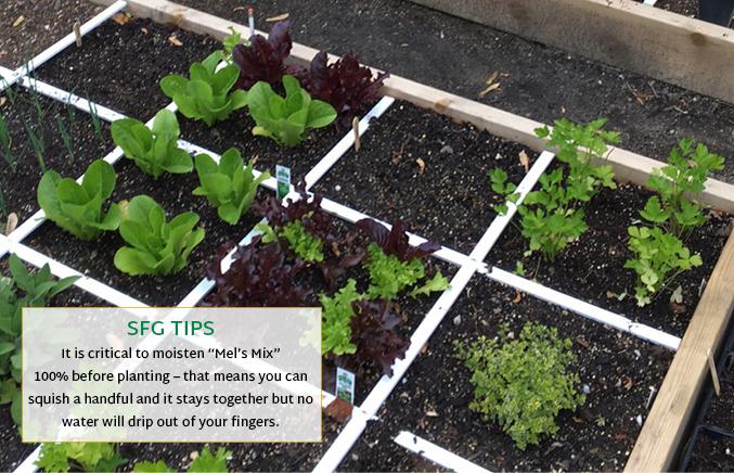 Method Square Foot Gardening