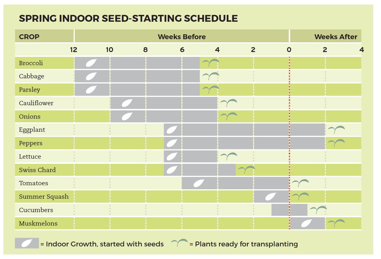 planting chart cheat sheets - square foot gardening  square foot gardening foundation